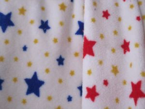 Polyester Polar Fleece Fabric pictures & photos