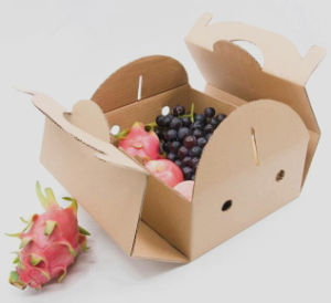 Cheapest Kraft Fluted Paper Fruits Storage Box pictures & photos