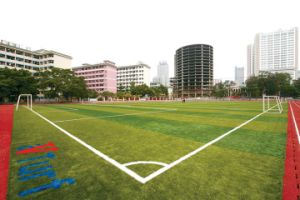 Football Artificial Grass