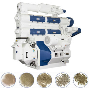 Animal Feed Pellet Mill (LDG-ZL) pictures & photos