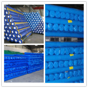 China PE Tarps Roll, PE Tarpaulin Roll pictures & photos
