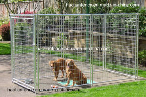 Welded Wire Mesh Dog Panel, Dog Runs pictures & photos