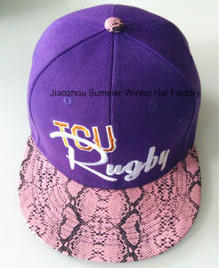 3D Embroidered Snapback Hat City Fashion Hat Trucker Cap pictures & photos