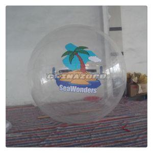 Customzied Paintings Inflatable Water Walking Human Sphere Ball