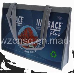 Professional Reusable PP Non Woven Bag (SPN0001)