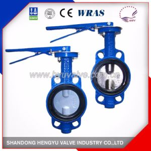 Wafer Type Butterfly Valve with Double Shaft pictures & photos
