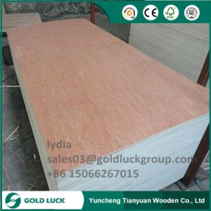 9mm/12mm/18mm Bintangor/Okoume Poplar Laminated Plywood for Packing Furniture and Decoration pictures & photos