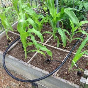 Flat Drip Pipe Irrigation System Manufacturer