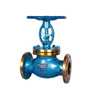 International Standard Bellow Globe Valve