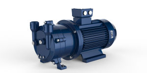 Ring Vacuum Pump pictures & photos