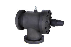 Globe Valve for Screw Compressor 5 Inch Cast Iron pictures & photos