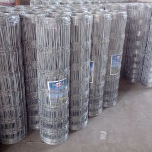 New Zealand Sheep Wire Mesh Fence pictures & photos