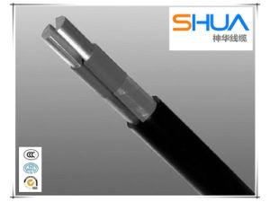 ACSR Cable Aluminum Conductor Aluminium Cable pictures & photos