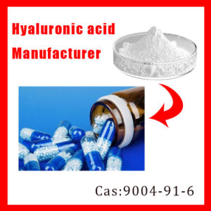 Manufacturer High Purity 9004-61-9 Hyaluronic Acid / Sodium Hyaluronate pictures & photos