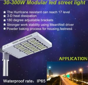 LED Street Light with Motion Sensor for Christmas