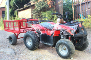 2017 New 300cc UTV 4X4 for Sale with Big Storage pictures & photos