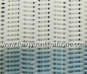 Polyester Spiral Filter Screen pictures & photos