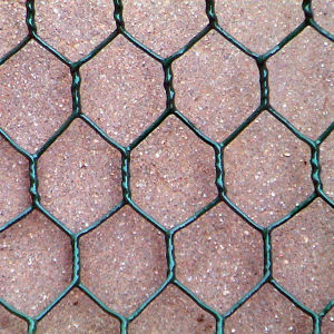 Low Carbon Wire Hot DIP Galvanized Hexagonal Wire Netting pictures & photos