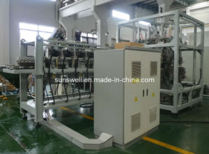 Automatic Rotary Blow Molding Machine (SSW-R14) pictures & photos