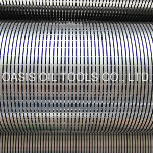 6inch Stainless Steel Water Well Screen/Wedge Wire Screens pictures & photos