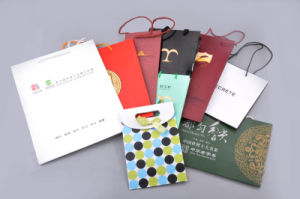 Various Colorful Paper Shopping Gift Bags pictures & photos