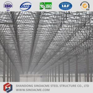 Steel Space Frame Structure Roofing Workshop pictures & photos