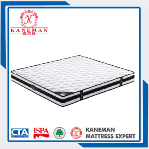 Classical 9 Inch Spring Hotel Mattress with Handles pictures & photos