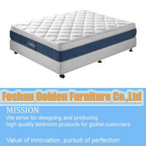 High Quality Water Proof Mattress pictures & photos