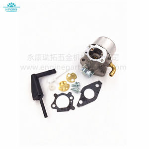 Carburetor for Briggs and Stratton 798653 pictures & photos