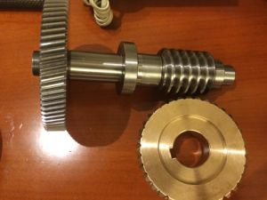 CNC Machining Worm Gear and Worm Shaft pictures & photos