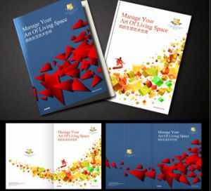 Wholesale Custom Bulk Colorful Cheap Flyers Printing