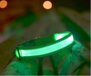 Wholesale Flashing Glow Dog Collar with Transparent Binding