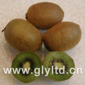 Export Quality Fresh Green Kiwi Fruit pictures & photos