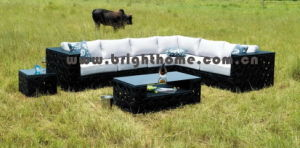 Rattan Furniture / Outdoor Furniture (BP-852) pictures & photos