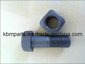 Gray Bolt&Nut for Track Shoe (M12/M14/M16/M18/M20/M22/M24)