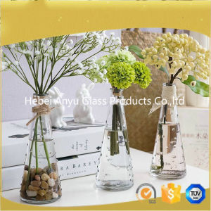 Hot Sale Clear Glass Vase /Home Decoration Flower Glass Vase with Flower