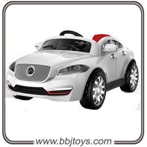 Wholesale Cars