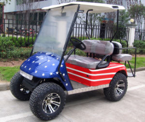 Customized Electric Golf Cart / Golf Buddy pictures & photos