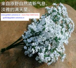 Best Selling Flowers of Baby′s Breath Gu-Zxr410193653 pictures & photos
