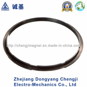 Hot Sale Custom Ring Magnet for Various Motor