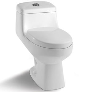 Bathroom Sanitary Ware Siphonic One-Piece Toilet St1019