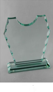 Delicate Glass Awards for Activity (BL702)