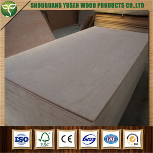 1220*2440mm Poplar Core Mr Glue Plywood for Furniture Use pictures & photos