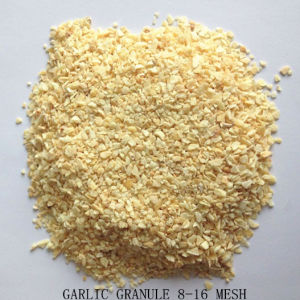 Garlic Granule 8-16 Mesh with Good Quality From Factory pictures & photos