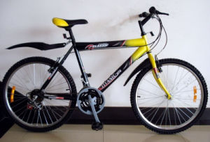 26inch Simple MTB Bicycle/Bike/Cycle for Sale pictures & photos