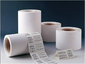 Pirnted Paper Adhesive Sticker PVC Self-Adhesive Label (Z20)