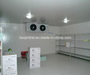 Cold Room Keep Fresh Fruits and Vegetables Cold Storage pictures & photos