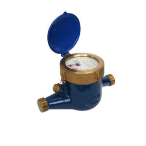 Multi-Jet Rotary Vane Wheel Cold /Hot Water Meter pictures & photos