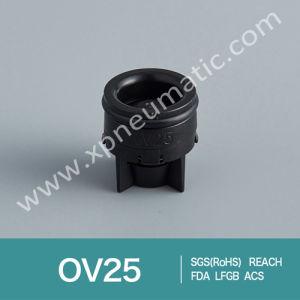 Mini Cartridge Check Valve Dn12 pictures & photos