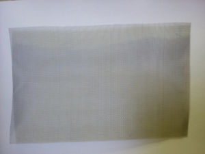 300 Mesh Woven Wire Metal Mesh Fabric pictures & photos